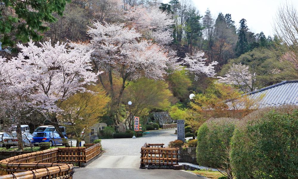 竹屋敷の庭園は四季折々の変化を楽しませてくれます。